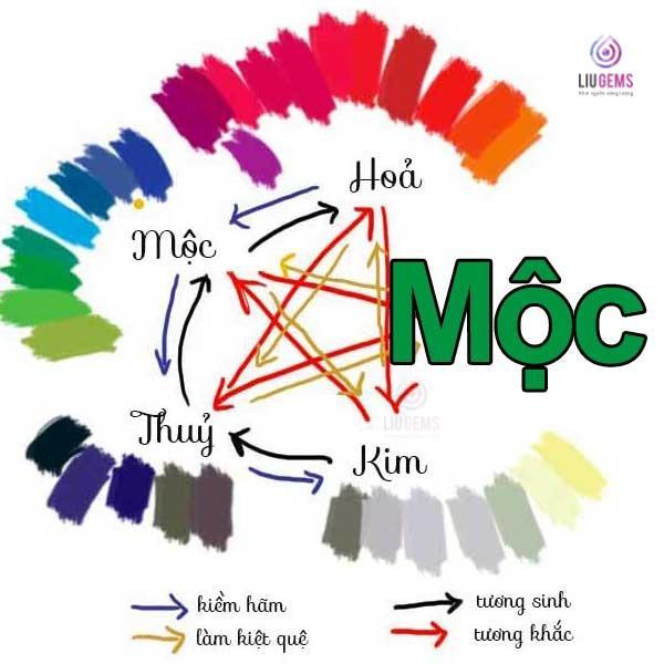 Lựa chọn màu sắc cho người mệnh Mộc